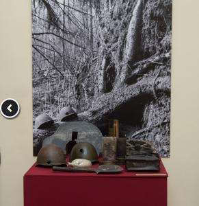 Выставка «Дорогами памяти и поиска»